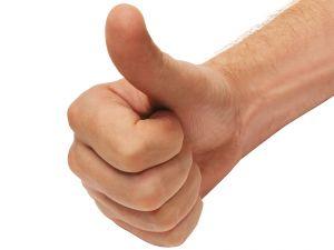 File:Hands-2-ok-hand-187333-m.jpg