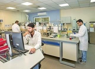 Lab at computer.jpg