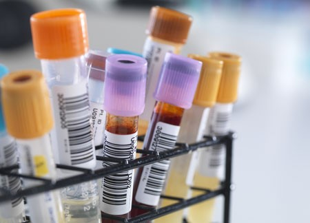 File:Toxicology.jpg
