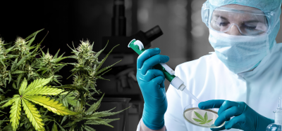 Cannabis Scientist.png