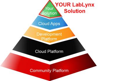 Informatics Pyramid YOUR2.png