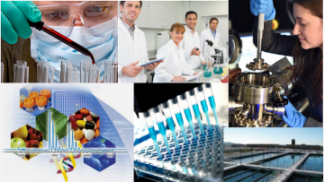 Various Types of Labs Montage.PNG