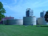 Environmental plant-200x150.jpg
